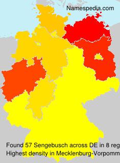 Sengebusch
