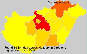 Brindza