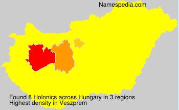 Holonics