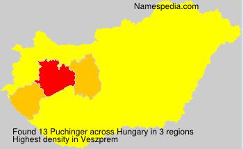 Puchinger