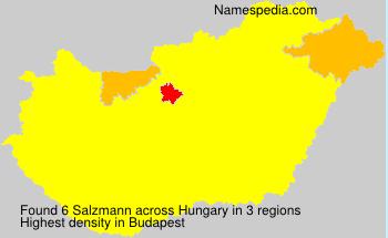 Salzmann