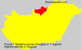 Spagina
