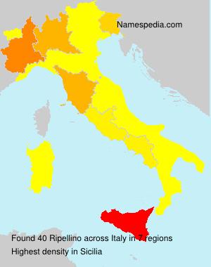 Ripellino
