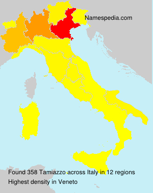 Surname Tamiazzo in Italy