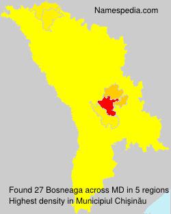 Bosneaga