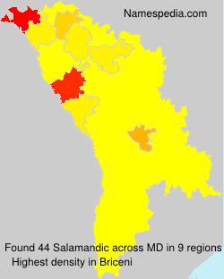 Salamandic