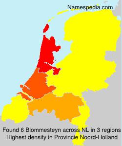 Blommesteyn