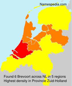 Brevoort