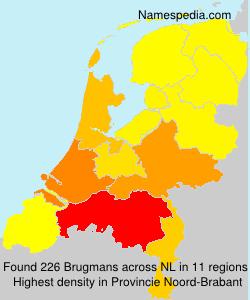 Brugmans
