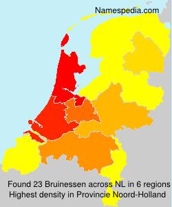 Bruinessen