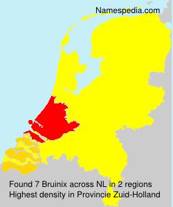 Bruinix