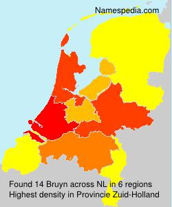 Bruyn