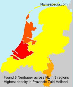 Neubauer