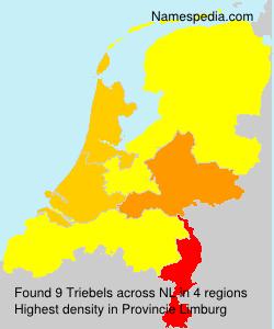 Triebels