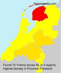 Ynema