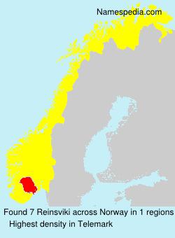 Reinsviki