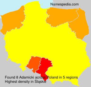 Adamicki