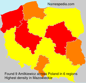 Amilkiewicz