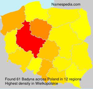 Badyna