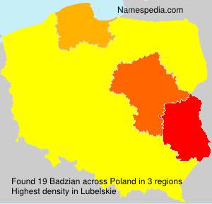 Badzian