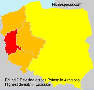 Belezina
