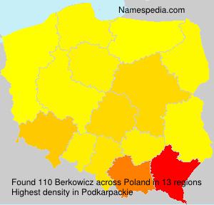 Berkowicz