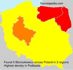 Blizniukiewicz