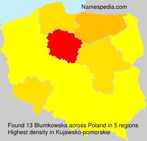 Blumkowska