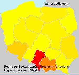 Bodzek