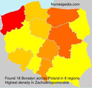 Boradyn