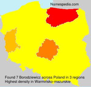 Borodziewicz