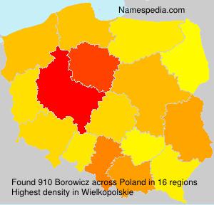 Borowicz