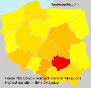 Familiennamen Borycki - Poland