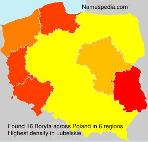 Boryta