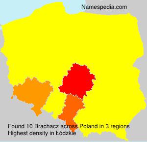 Brachacz
