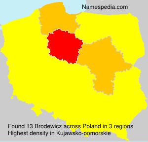 Brodewicz