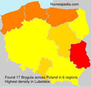 Brygula