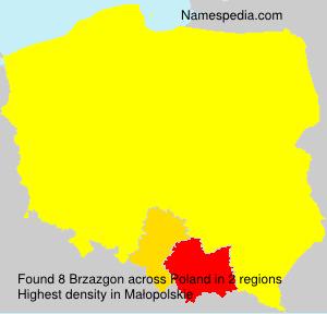 Brzazgon