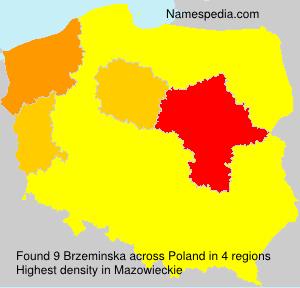 Brzeminska