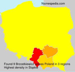 Brzostkiewicz