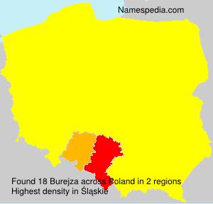 Surname Burejza in Poland