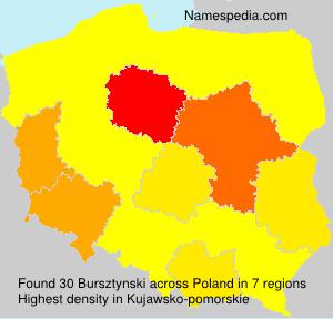 Bursztynski