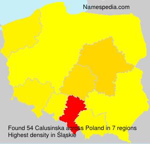 Calusinska