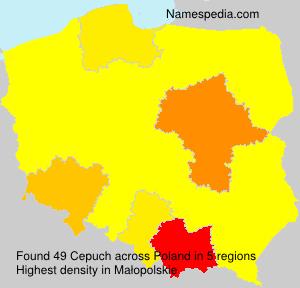 Cepuch