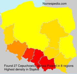 Cepuchowicz
