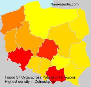 Surname Cyga in Poland