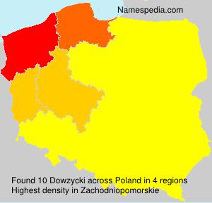 Dowzycki