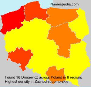 Drusewicz