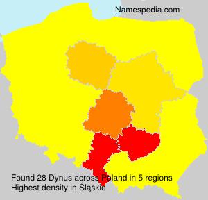 Dynus