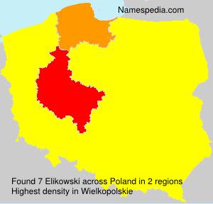 Elikowski